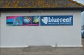 Image for Blue Reef Aquarium - Hastings, UK