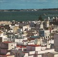 Image for A City in Spain Plans to Exile 5,000 Pigeons - Cadiz, Spain