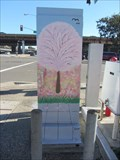 Image for Four Season Box - South San Francisco, CA