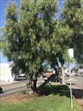 Image for Randall Jack Meyer - Laguna Beach, CA