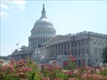 Image for U.S. Capitol - WASHINGTON D.C. EDITION - Washington, D.C.