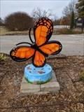 Image for Botanic Garden Butterfly - Stillwater, OK