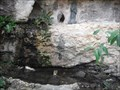 Image for Seider Spring - Travis County, TX, US
