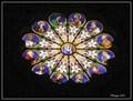 Image for Santa Maria sopra Minerva - Rome, Italy
