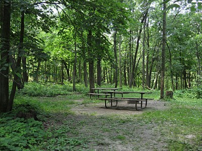 Sites in cart-in campground have two picnic tables.