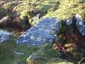 Image for Granite Leat Bridge, Combestone Tor, Dartmoor