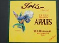 Image for Iris Apple Label - Watsonville, California