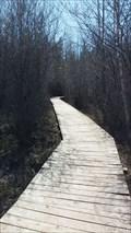 Image for Lime Kiln Boardwalk in Stoney Swamp - Ottawa, Ontario, Canada