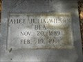 Image for 101 - Alice Julia Wilson - Starke, FL