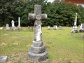 Image for Peter D Jones, Caledonia UMC Cemetery, Johns, NC, USA