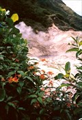 Image for Diamond Falls Botanical Gardens - Soufrière, Saint Lucia