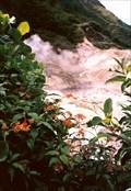 Image for Diamond Falls Botanical Gardens - Soufrière, Saint Lucia
