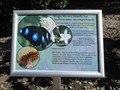 Image for Butterfly trail sign - Botanic Gardens, Mackay, Qld, Australia