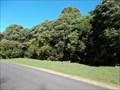 Image for Robertson Nature Reserve, South St, Robertson, NSW, Australia