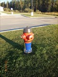 Image for Royal Canadian Mounted Police Hydrant - Fox Creek, Alberta