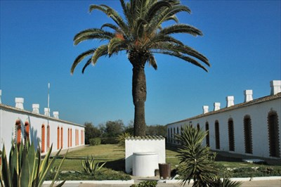 Fabricas de conservas em portugal