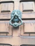 Image for Lion - Chantada, Lugo, Galicia, España