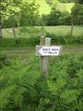 Image for Falls Walk, Glas Pwll, Machynlleth, Ceredigion, Wales, UK
