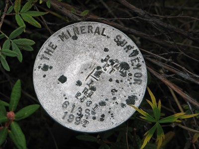 Closeup view ot The Mineral Surveyor mark.