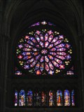 Image for Les vitraux de Notre Dame de Reims