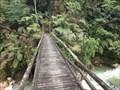 Image for Podocarpus National Park (1) - Zamora, Ecuador