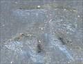 Image for Cut Bench Mark - Taviton Street, London, UK