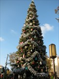 Image for California Adventure Christmas - Anaheim, CA