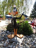 Image for Daffy Duck - Vallejo, CA