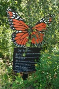 Image for I'ves Run Butterfly Garden - Near Tioga, PA