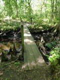 Image for Jones Creek Footbridge - Jacksonville, FL