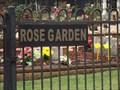 Image for 'Memorial' Rose Garden - Pampoolah, NSW, Australia