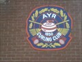 Image for Ayr Curling Club