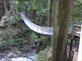 Image for Cascade Falls Suspension Bridge — Hatzic Valley, BC