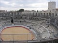 Image for The Roman Amphitheater of Colonia Iulia Paterna Arelatensium Sextanorum (Arles)