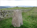 Image for Turin Hill - Angus, Scotland.