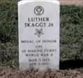 Image for Luther Skaggs, Jr.-Arlington VA