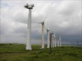"Image for ""Kamaoa Wind Farms"" - South Point,  Hawai`i"