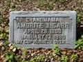 Image for 100 - Amorite J. Carr - Jacksonville, FL