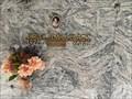 Image for Shirley Temple Black - Palo Alto, CA