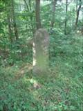 Image for USCGS West Line Stone 222, 1885, Pennsylvania - Maryland