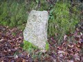 Image for SS Boundary Stone, Plasterdown, West Dartmoor.