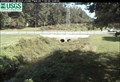 Image for McMullen Creek Webcam - Charlotte, NC