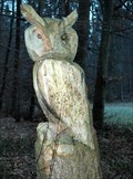 Image for Wooden Owl in Winterthur/Switzerland