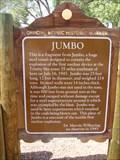 Image for Jumbo