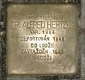 Image for Hertzka Alfred, Prague, CZ
