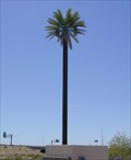 Image for Apache Junction Palm Tree Tower