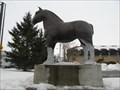Image for Clydesdale - Navan, Ontario