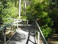 Image for Botanic Gardens Boardwalk- Booderee National Park, Jervis Bay Territory, ACT