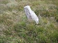 Image for Lamerton Lane Guide Stone