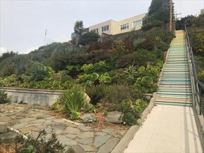 Succulent Garden to Side of Stairway, San Francisco, California